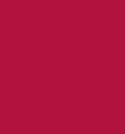 Rojo Granate